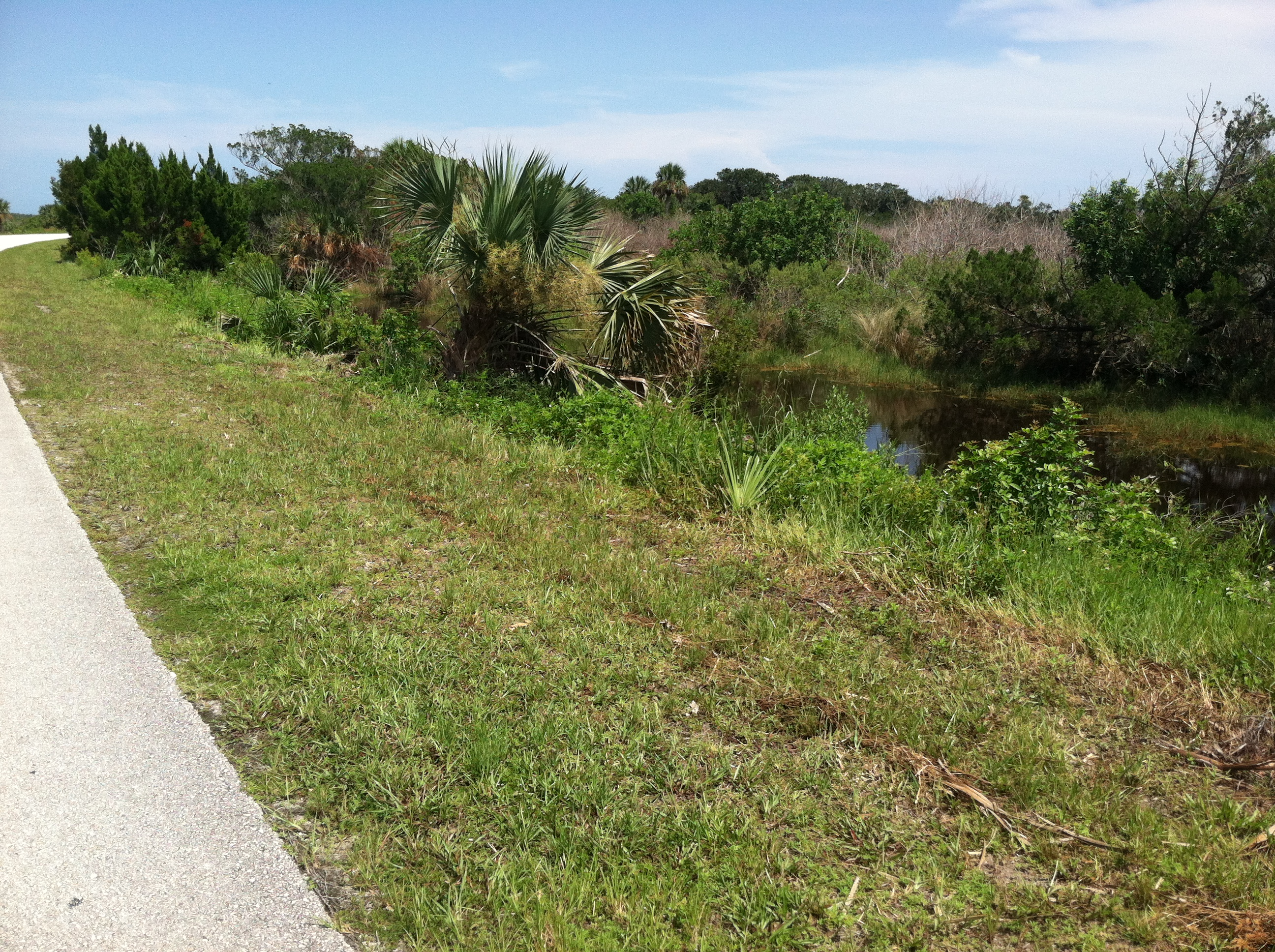 Cape Canaveral Running Path 4